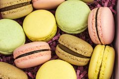 French macarons in pastel colors. French sweet macarons  in pink, yellow, green and brown on purple paper shreds Stock Photography