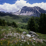 French Swiss Alps Royalty Free Stock Photo