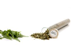 French Tarragon Royalty Free Stock Photo