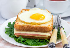 French toasted sandwich Croque madame with ham and cheese Royalty Free Stock Image