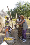 French tourist participates in a pounding. A French tourist participates in folding corn in good spirits with women from a village in Burkina Faso Royalty Free Stock Photo