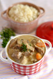 French traditional veal stew blanquette. French traditional veal meal blanquette with gravy stock images