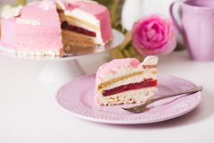 Delicious french cake Royalty Free Stock Photos