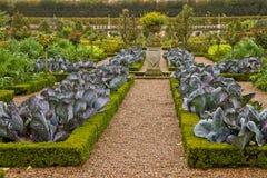 French  vegetable garden Stock Image