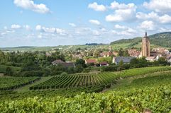 French village and grape ranks. French village surrounded by grape ranks Stock Photos