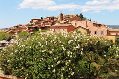 French village of Roussillon behind the flowers Stock Photography