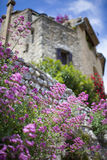 French village view with flowers, provence, france Royalty Free Stock Photo