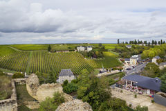 French vineyards  and town Royalty Free Stock Image