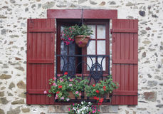 French window. An old French window with red blinds and flowers Stock Image