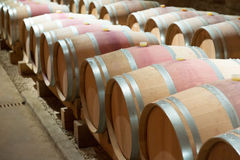 French winery with   barrels Royalty Free Stock Image