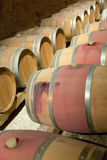 French winery with  wooden barrels Stock Photography