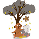 Frends. Friends dog and rabbit sitting under a tree, which weighs Cortona sun on a cloudy autumn day Stock Photos