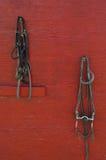 Frenos del caballo en una pared roja Foto de archivo libre de regalías