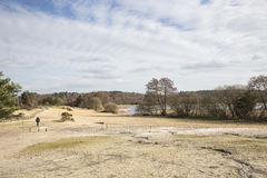 Frensham伟大的池塘, Frensham共同性, Waverley,萨里 库存照片