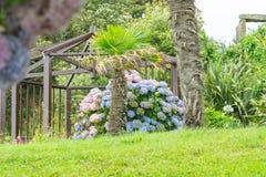 Frente de mar en Cornualles, un jardín tropical con las estructuras fotografía de archivo libre de regalías