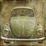 Frente del escarabajo Foto de archivo