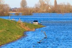 Frente-terras e estradas afogadas perto de Zutphen, os Países Baixos Fotografia de Stock Royalty Free
