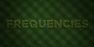 FREQUENCIES - fresh Grass letters with flowers and dandelions - 3D rendered royalty free stock image Royalty Free Stock Photo