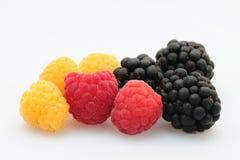 Fres色的莓果多 免版税图库摄影