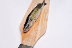 Fres Fische auf dem Vorstand Lizenzfreies Stockfoto