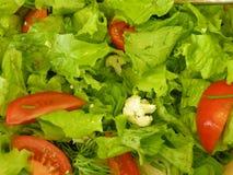 Fres Salat Lizenzfreies Stockbild