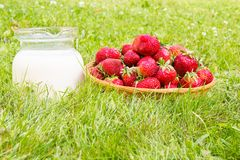 Fresa con leche imagen de archivo