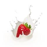 Fresa de caída en la leche Foto de archivo libre de regalías