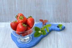 Fresa de cosecha propia en flor floreciente cercana del plato transparente en el tablero azul, de madera Fotos de archivo libres de regalías