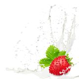 Fresa del chapoteo de la leche Fotografía de archivo libre de regalías