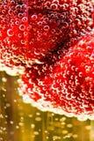 Fresa en el vidrio de champán Imagenes de archivo