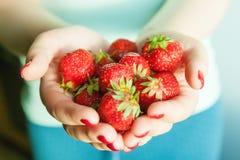 Fresa en las palmas de una muchacha Fotos de archivo