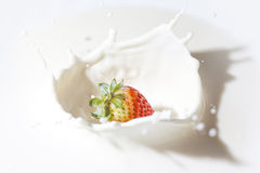 Fresa en una crema foto de archivo