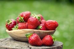 Fresa Fresa roja Fresas cosechadas frescas en diversas posiciones foto de archivo