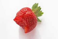 Fresa fresca Foto de archivo libre de regalías