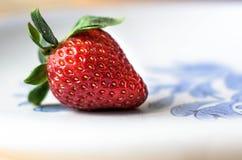 Fresa fresca Imagen de archivo