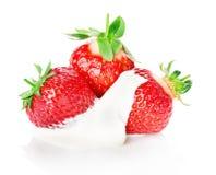 Fresa fresca con la crema aislada en el fondo blanco Foto de archivo libre de regalías