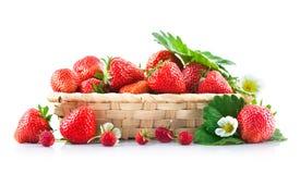 Fresa fresca de la cesta con la hoja y la flor verdes Imagenes de archivo