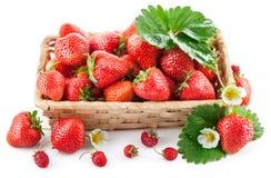 Fresa fresca de la cesta con la hoja y la flor verdes Fotos de archivo libres de regalías
