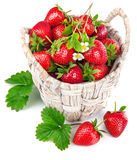 Fresa fresca de la cesta con la hoja y la flor verdes Fotografía de archivo libre de regalías