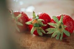 Fresa fresca en un fondo de madera oscuro, cierre para arriba de la fresa grande en la madera Foto de archivo libre de regalías