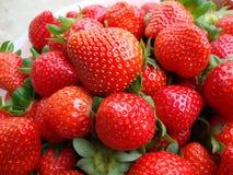 fresa fresca madura Foto de archivo libre de regalías