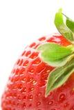 Fresa madura Foto de archivo libre de regalías