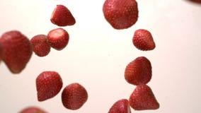 Fresa que cae en la crema blanca del yogur en tablero de la mesa de la cámara lenta metrajes