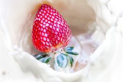 Fresa que cae en un cuenco de leche con salpicar de la leche Fotos de archivo