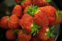 Fresa roja fresca Fotos de archivo