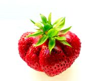 Fresa roja, primer con de las porciones del foco selectivo Imagen de archivo libre de regalías