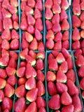 Fresa varitety en cestas en el mercado 4k Imagen de archivo libre de regalías