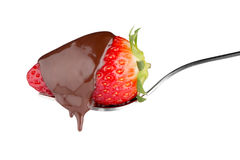 Fresa y chocolate en una bifurcación fotos de archivo