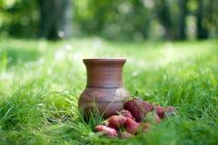 Fresa y jarro en una hierba Foto de archivo libre de regalías