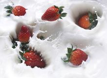 Fresa y leche Imagen de archivo